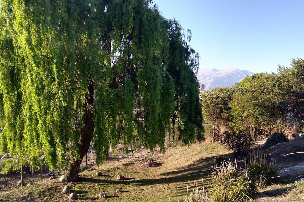 vista del jardin de la casa hacia el rio