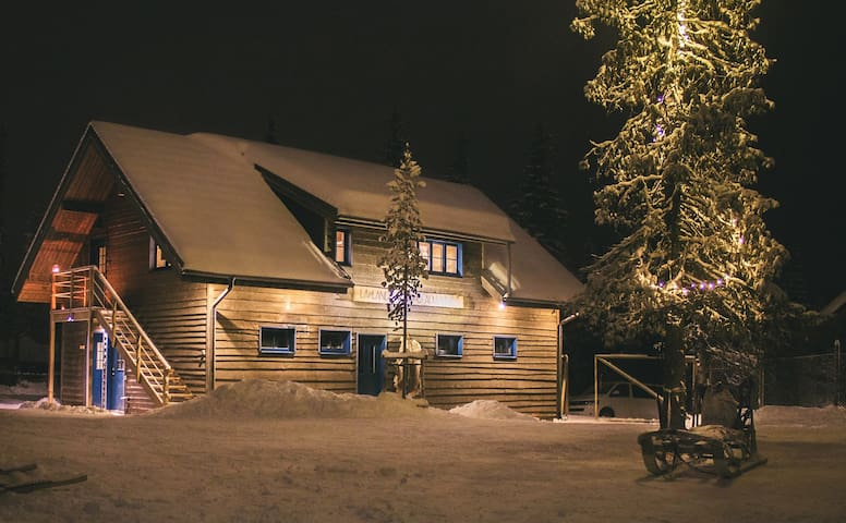 Heavenly lodge retreat in a Lapland forest