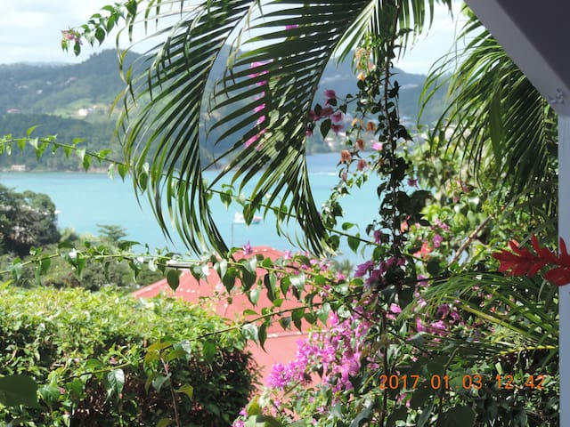 Martinique/Center/whole flat/seaview/ F.W.I
