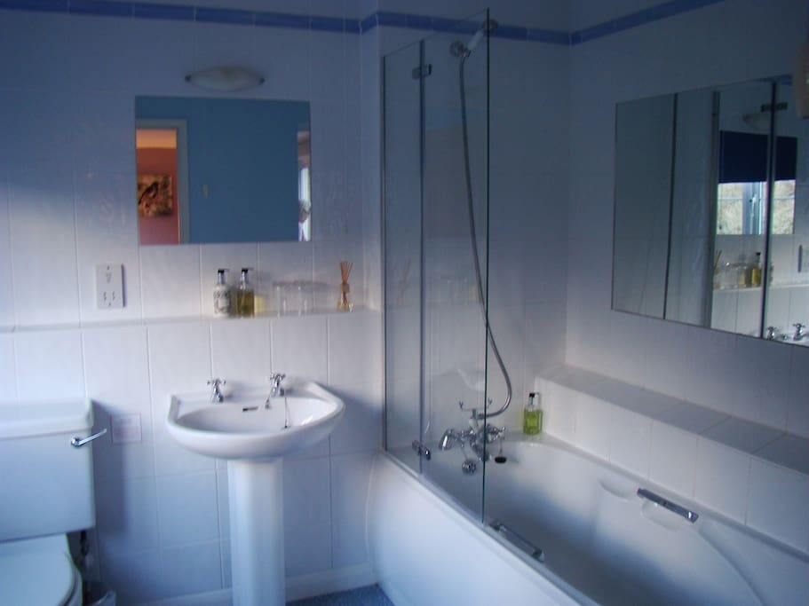 En-suite Bath with Shower over