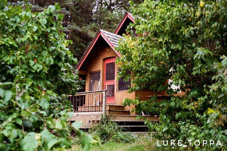 Cozy Rustic Cabin on Nature Sanctuary *seasonal*