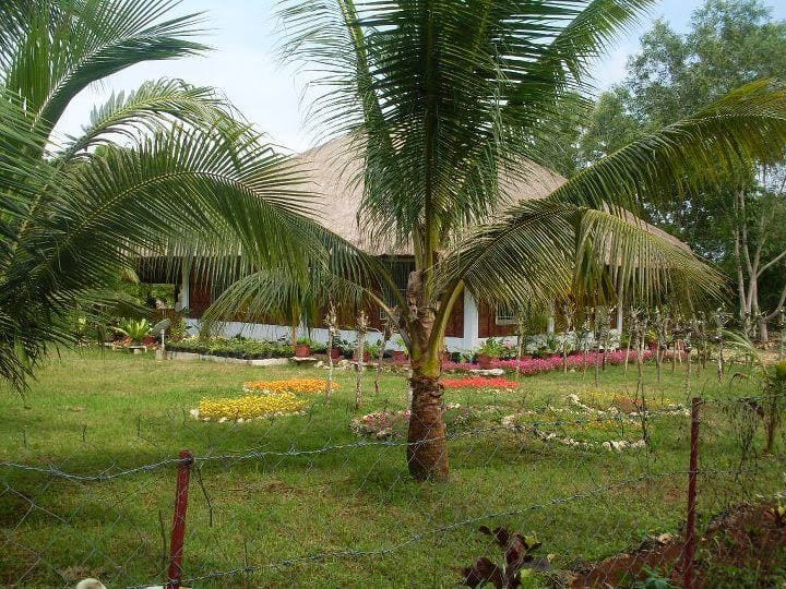 Bamboo Hut in heart of  Panglao Island Paradise