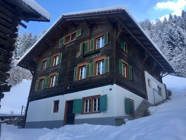 Traditional Swiss House in Nature - Tavanasa - House