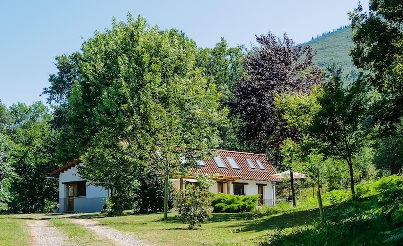 Casa Cangas de Onis Picos de Europa - Cangas de Onís - Huis