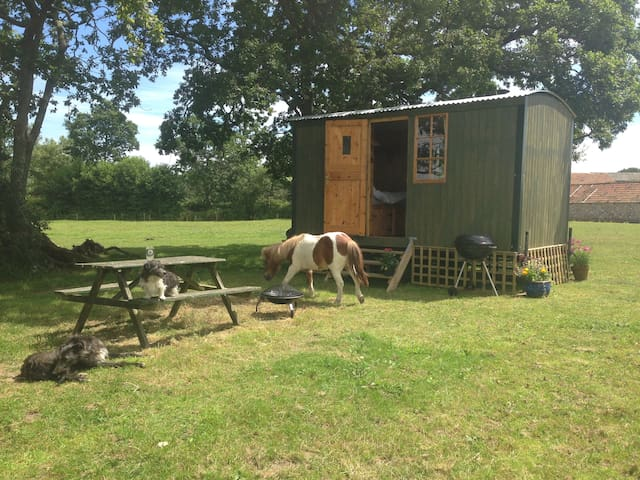 The Shepherds Hut, Tritchmarsh Farm