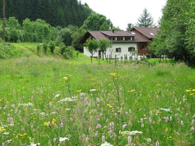 La Scierie (Période hivernale) - Lubine - Haus