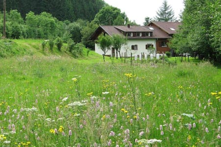 La Scierie (Période hivernale) - Lubine - House