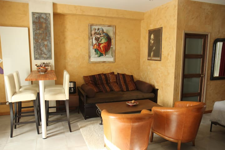 Original and very cosy decoration - Amboise - Appartement