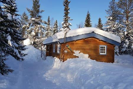 Swedish familiy cabin 5+1 p Björnliden, Grövelsjön