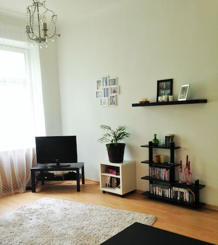 Nice, cosy apartment - Wien - Apartment
