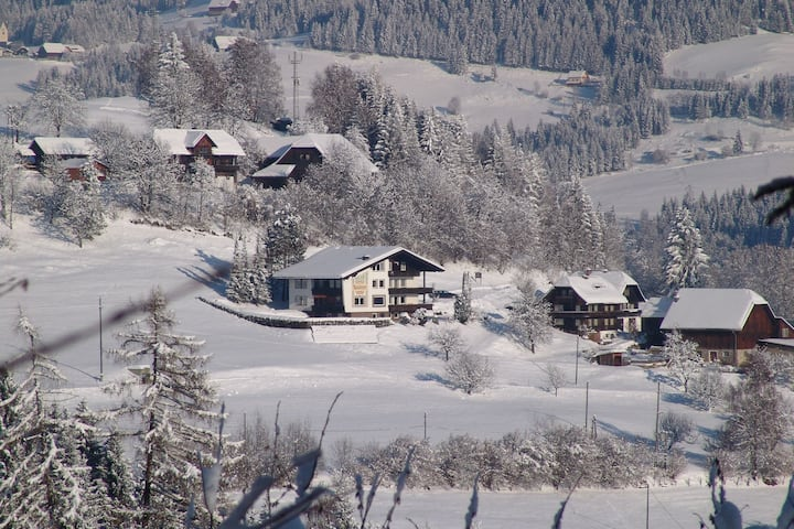 Spacious Apartment in Afritz am See near Ski Area