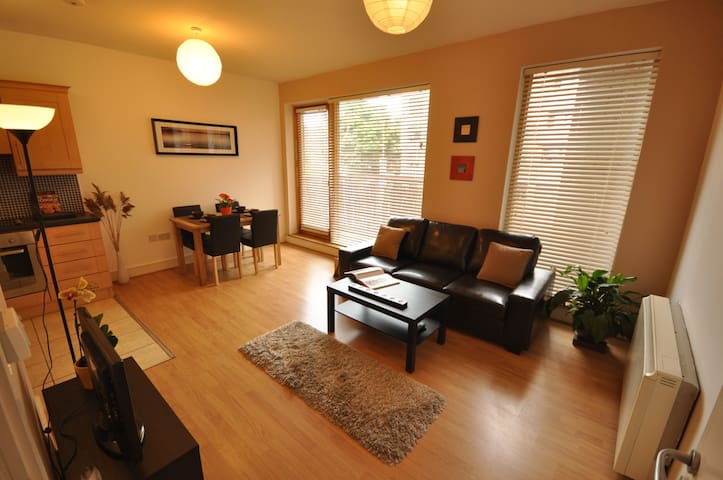 2 bedrooms/2 bathrooms apt near GuinnessStorehouse