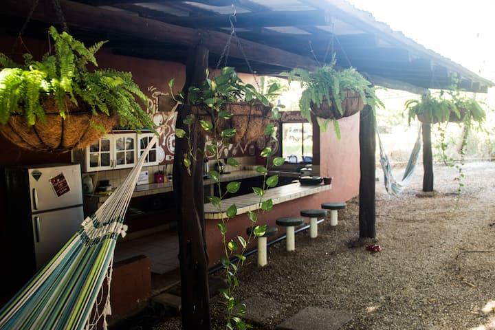 Tsunami Surf Hostel - TAMARINDO -CR-