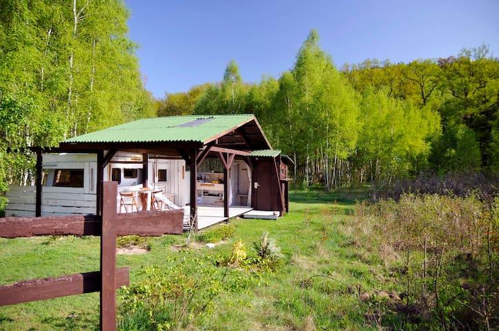 Forest camping     (Leśny kamping) Podgórzyce 19 - Podgórzyce - Дом на колесах