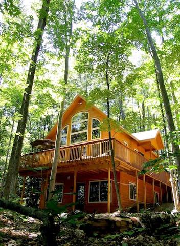 Cedar Lake Lodge #1
