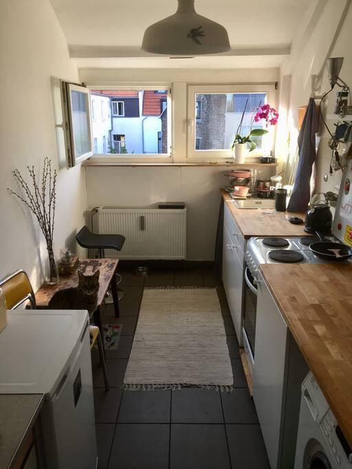 Die Küche: Waschmaschine, Wasserkocher, Kühlschrank und was zum Kochen notwendig ist. (Ohne Kater!)