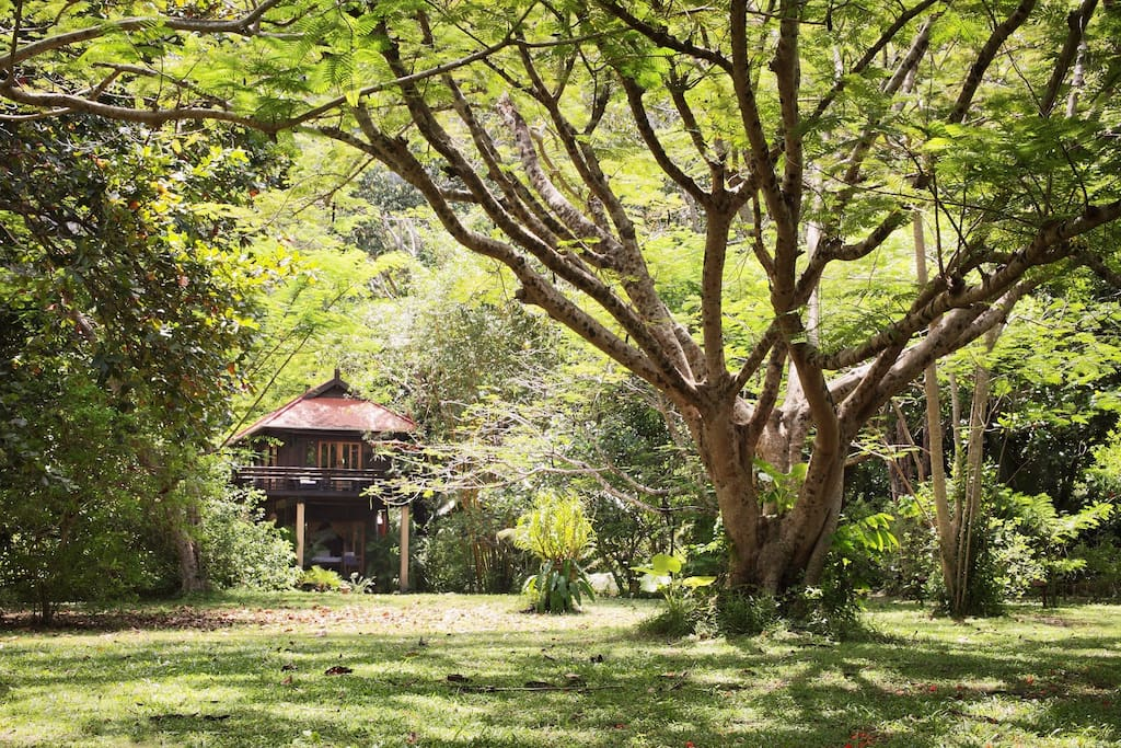 Baan Ling Guest Wing - nestled in nature