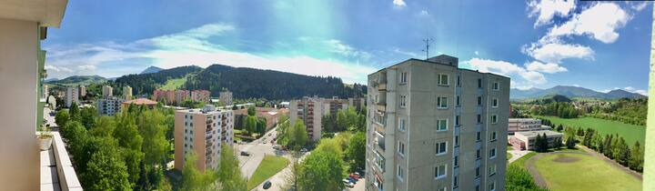 Mountain View Flat