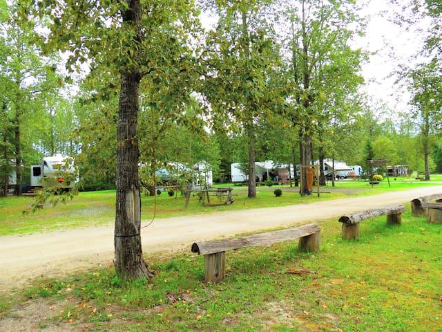 """""""Delco Alley"""" Campsite 11-  $23.00  Unserviced"""