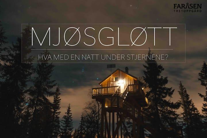 Unik tretopphytte - Mjøsgløtt -Faråsen Tretoppgård