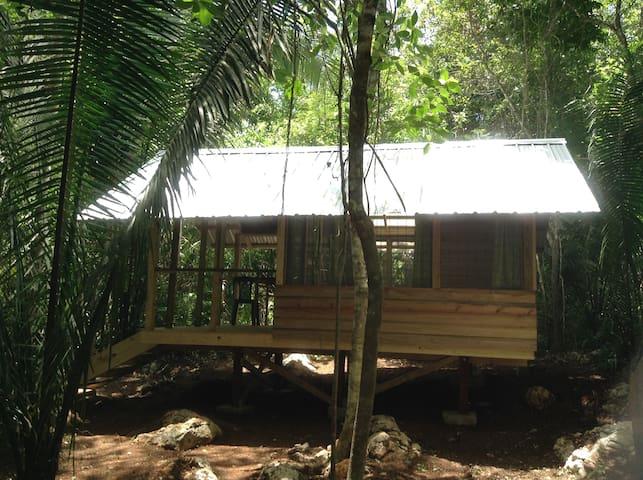 Moonracer Farm:  Cohune Camping Casita Room 3
