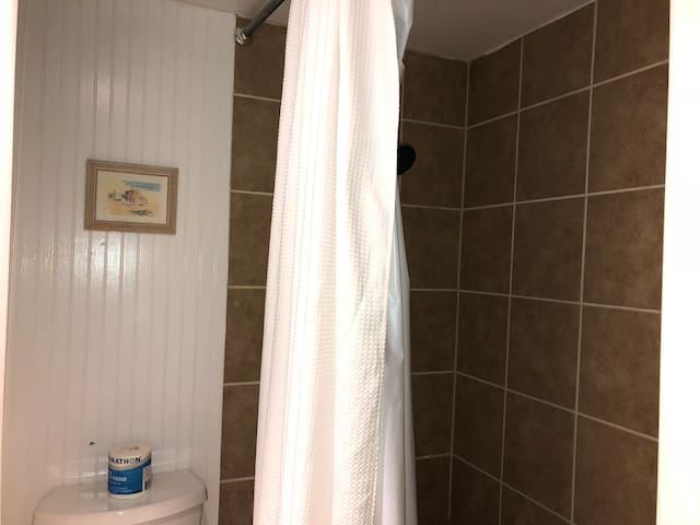 Separate Shower/Tub Combo
