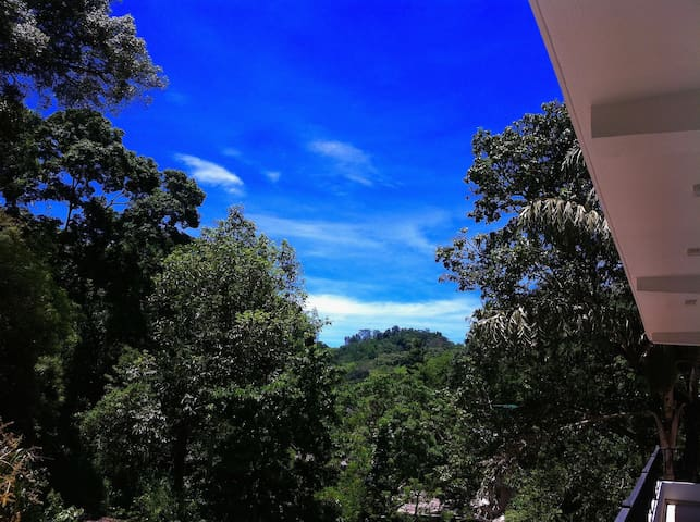 B&B by the Woods - Kandy - Bed & Breakfast