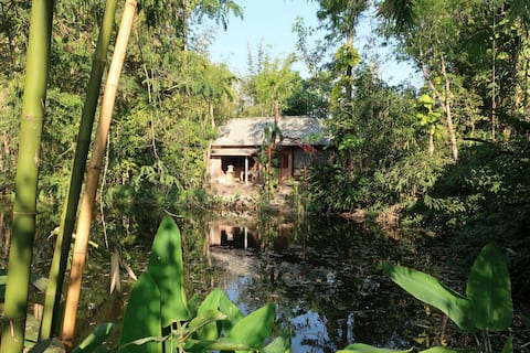 Quiet Natural Retreat 15 km to City — Lychee Lodge