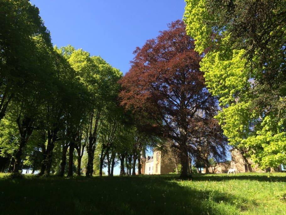 le parc de 3 ha sans vis à vis