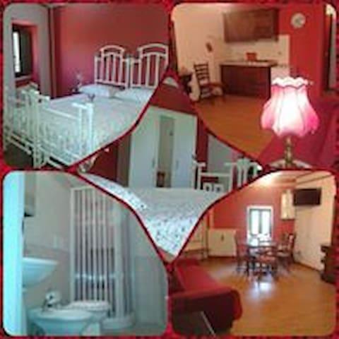 L'Angolo: appartamento la Rosa