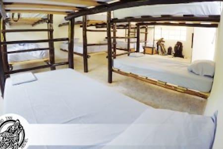 camas en renta hotel loboinntulum - Bed & Breakfast