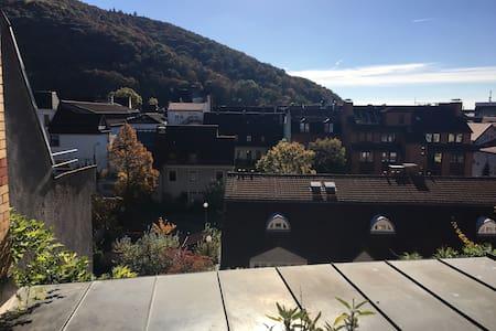 Über dem Neckar - 海德尔堡