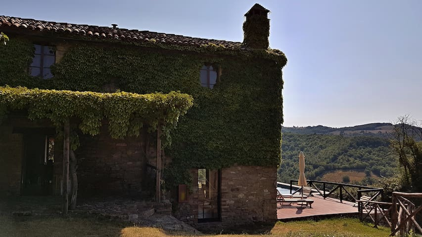 Vineyard Cottage  barn conversion with pool Umbria