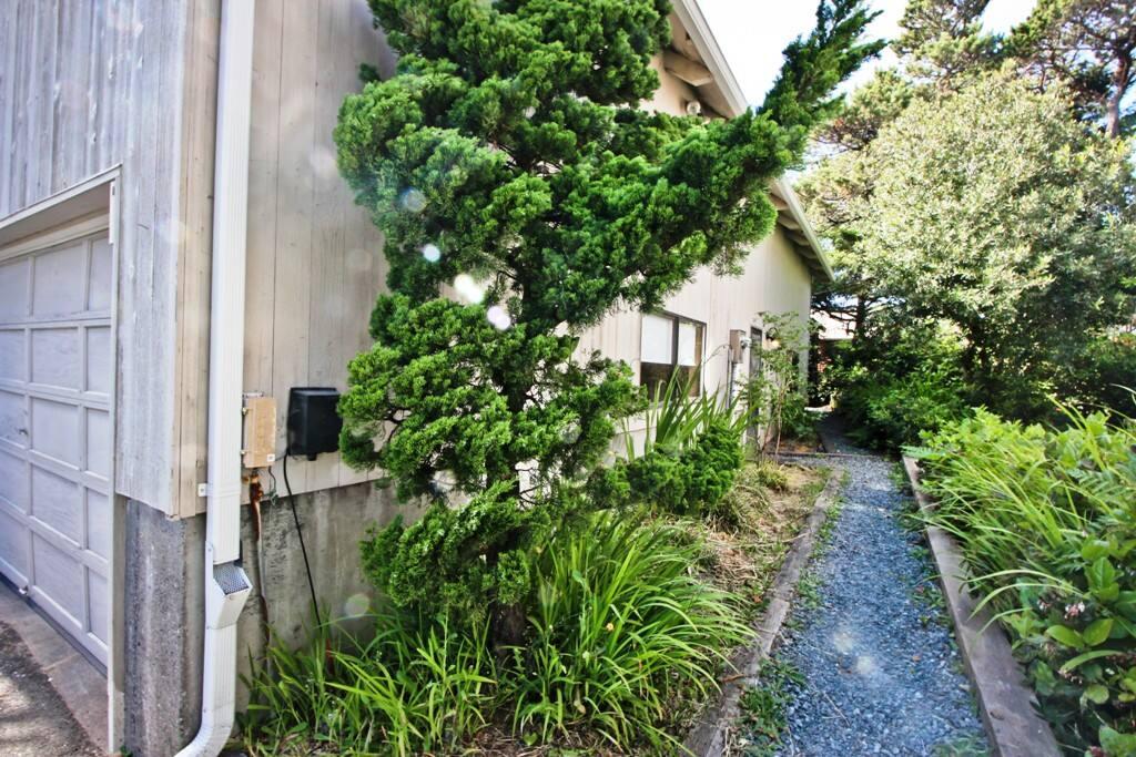Landscaped gravel walkway to entry door.