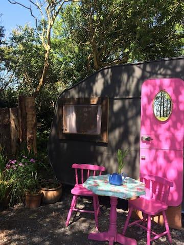 Pink flower retro Caravan on the skellig ring