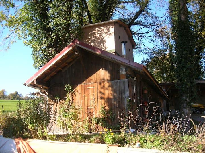 Gite avec chambre dans une cabane dans les arbres