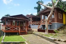 Guest House Quinta Natural, harmonia Verde natura
