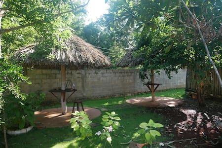 Mayan Paradise Garden