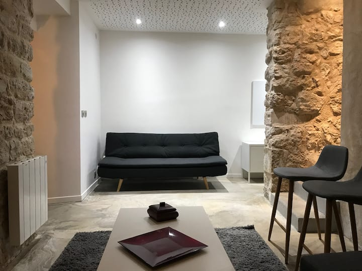 Appartement atypique 50m2 situé au centre de Paris