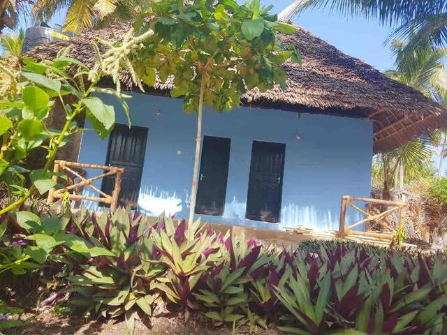 Dreams of Mapacha ' Einzelzimmer Blue'