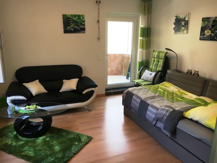 Modern 1,5 Zimmer Apartment -free WIFI, near Fair