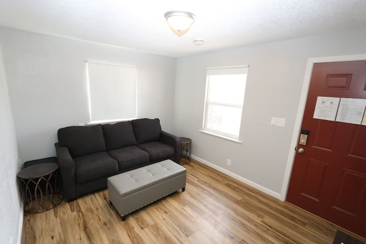 Living Room Couch/Sofa-bed and Ottoman