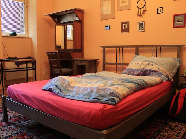 Accomodation in cozy flat near the city centre.