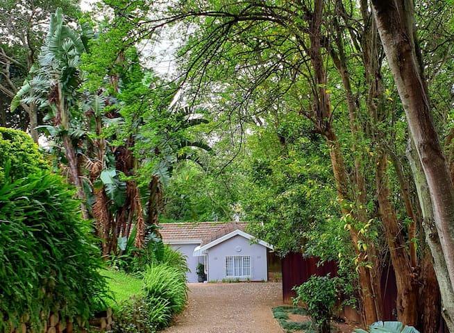 Haven Cottage, Durban
