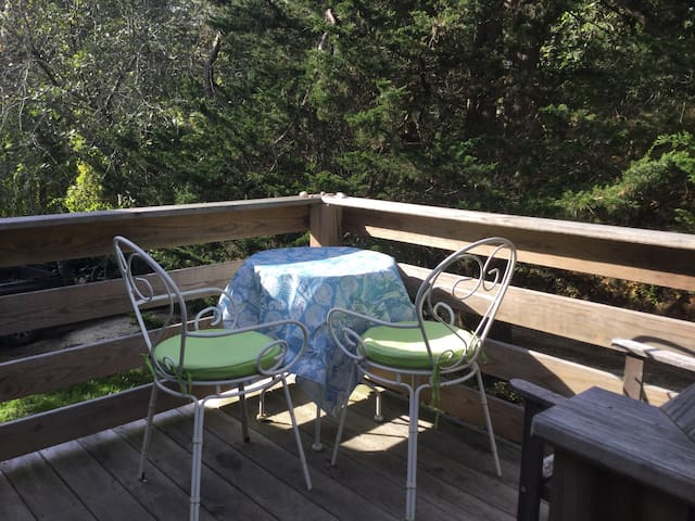 Sunny studio, private entrance & deck - Wellfleet - Bed & Breakfast