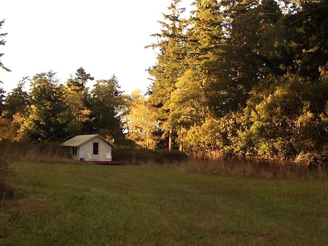 Sweet yurt in pastoral meadow