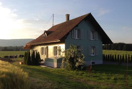 Nice house centrally located - Wangenried - Haus