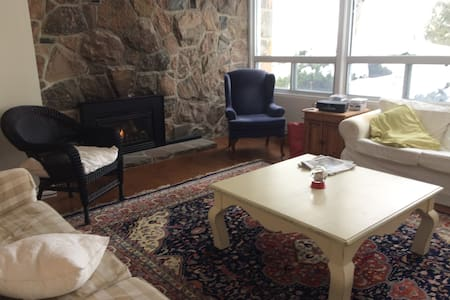Barrie Area - All Year Round Large Family Cottage - Barrie