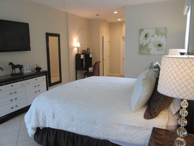 Spacious Downstairs Master Bedroom