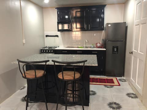 Cozy one bedroom apartment 15 mins frm Georgetown